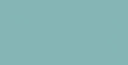 WEBSITE_Spring2016-02