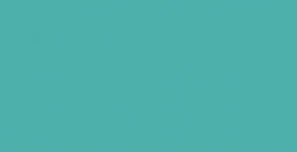 WEBSITE_Spring2016-03