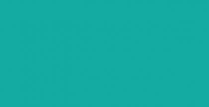 WEBSITE_Spring2016-04